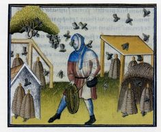 Fearless bee-keeper and his hives.  Lyon BM MS 27