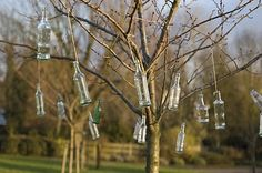 Hanging colored glass bottles from a tree is a great way to recycle, decorate, and keep evil spirits away. Fun project to do with my kid. We better start collecting!