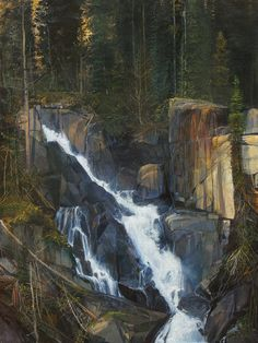 """Hidden Falls, oil, 40"""" X 30"""" by Michael Coleman"""