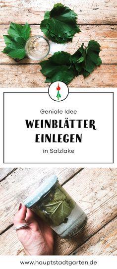 Weinblätter haltbar machen und konservierendurch Einlegen in Salzlake Garten DIY Inspiration