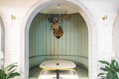 Molecola ceiling light and Etoile wall light by Il Fanale at the The Governor Hotel in Macquarie Park, Sydney. Light Decorations, Bar Design Awards, Cool Lighting, Lighting Showroom, Bar Design, Hotel, Bar Design Restaurant, Ceiling Lights, Environmental Design