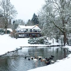 Winter at crooked creek cottage