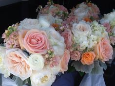 Peach and coral