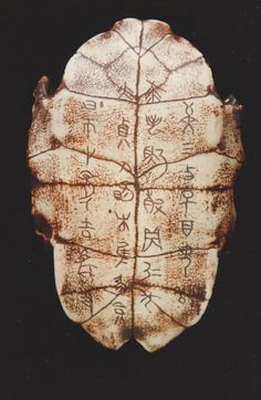 Oracle bone inscription is the oldest and systemized form of Chinese character found hitherto. The words are being recorded by carving characters onto animal bones or tortoise's shells.