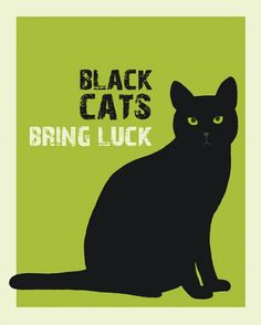 Black cats bring luck in many other places, while in US it 's all about bad luck. My black cat is lucky for me!