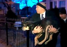 New Jersey Mayor Sweeps in to Rescue Dog in Sub-Freezing Temps