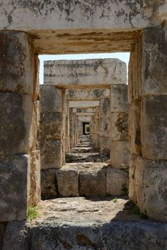The Roman Hippodrome Ruins in Tyre.