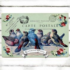 Antique Blue Birds Post Card Large A4 Instant Digital Download Vintage Graphic Printable Shabby Chic Label Tag Fabric Transfer Decoupage Art