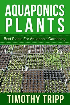 4 Easy Steps to Set-Up Your Own Backyard Aquaponics System - Tools And Tricks Club Aquaponics Greenhouse, Aquaponics Plants, Aquaponics System, Hydroponic Gardening, Organic Gardening, Water Plants, Cool Plants, Agriculture, Culture Indoor