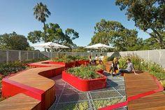 O telhado vivo da Universidade de Melbourne na Austrália