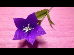 How to make crepe paper flowers flower making of crepe paper how to make blue star crepe paper flowers flower making of crepe paper paper flower tutorial youtube mightylinksfo