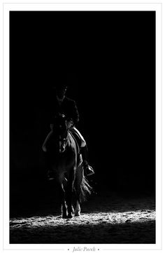 Dressage. Takes atleast 4 years to learn the basics! Someday...someday