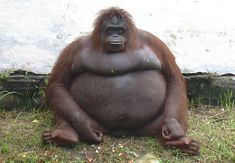 You know those days when you feel a lil bloated...