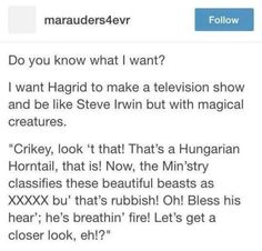 Hagrid with a Steve Irwin-ish show. Harry Potter Tumblr Posts, Harry Potter Love, Harry Potter Universal, Harry Potter Fandom, Funny Tumblr Posts, Harry Potter Memes, My Tumblr, Harry Potter Conspiracy Theories, Hogwarts Tumblr