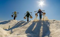 Female workers at salt flat Photo by Henry Lee — National Geographic Your Shot