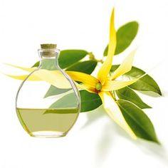 Esencia aromática de Ylang-ylang.