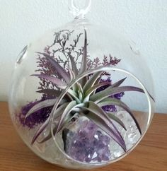 Air Plant Terrarium Kit Crystal Terrarium Large Hanging Terrarium Genuine Amethyst Cluster Mother's Day Gift Birthday Gift Thank You Gift by LaurasLites on Etsy https://www.etsy.com/listing/508157359/air-plant-terrarium-kit-crystal