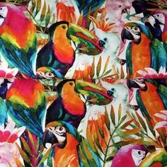 BIRDS OF PARADISE SOFT-FURNISHING FABRIC - EXTRA WIDE - Parrots Toucans Cockatoos Tropical - JL148 - Soft Furnishing Fabric - BY HALF METRE - 50 cm x 150 cm Wide Cockatoo, Parrots, Soft Furnishings, Jelly, Paradise, Tropical, Birds, Fabric, Painting