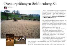 Dressurprüfungen Schönenberg ZH