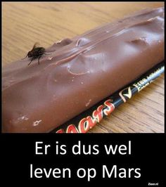 There is definately life on Mars 😂 Punny Puns, Ga In, Life On Mars, Just Smile, Laugh Out Loud, Funny Texts, I Laughed, Laughter, Have Fun