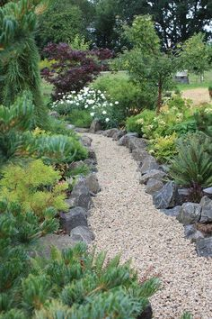 Awesome Decorative Planters for Gravel Garden Walkway Ideas Pick the Perfect Material for Garden Walkway Landscape Decor Ideas Gravel Garden, Garden Edging, Garden Paths, Pea Gravel, Gravel Pathway, Walkway Garden, Concrete Walkway, Pergola Garden, Lawn Edging