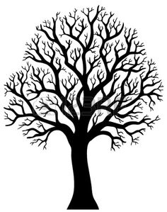 Silhouette of tree without leaf illustration  Stock Vector