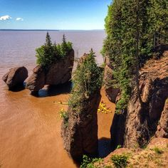 Top 10 Bay of Fundy High Tide Adventures (with images) · SeeNewBrunswick · Storify East Coast Travel, Destinations, High Tide, New Brunswick, Nova Scotia, Great Places, New England, Canada, Earth
