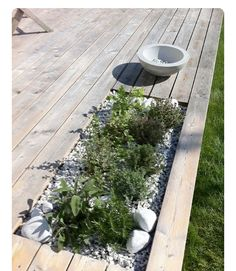 Terrific idea to brink plants right into your deck. This is the perfect place to have plants that can repel mosquitoes like lemongrass and citronella geraniums! Back Gardens, Small Gardens, Outdoor Gardens, Casa Milano, Scandinavian Garden, Marquise, Wooden Decks, Wooden House, Terrace Garden