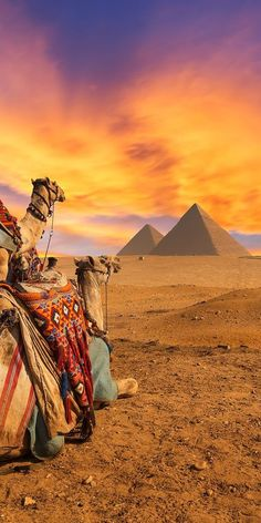Pyramids of Giza, Egypt- Travel Destination Giza Egypt, Pyramids Of Giza, Luxor Egypt, Egypt Travel, Africa Travel, Places Around The World, Travel Around The World, Places To Travel, Places To See