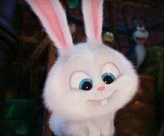 Lol this bunny is cute but he's a demon Cute Disney Wallpaper, Cute Cartoon Wallpapers, Snowball Rabbit, Rabbit Wallpaper, Pets Movie, Cute Bunny Cartoon, Cute Baby Animals, Kawaii, Animation
