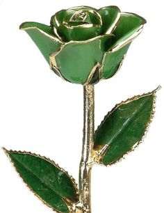 24k Gold Rose - Real Rose Dipped in Gold (Light Green) by Living Gold, http://www.amazon.com/dp/B00BOZR148/ref=cm_sw_r_pi_dp_ua2xrb0BG2Q25