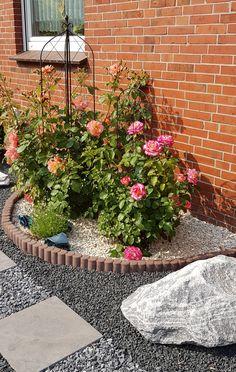 Stepping Stones, Outdoor Gardens, Gardening, Outdoor Decor, Plants, Inspiration, Home Decor, Gardens, Terrace