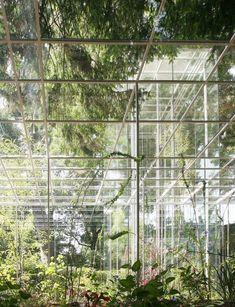 【謝宗哲談建築】自然系建築之三:環境的模擬──石上純也(上) MOT/TIMES 線上誌