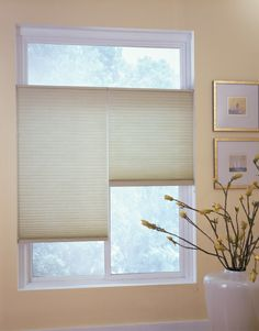 Top Down-Bottom Up Cell Shades are versatile - adjust the shades to suit the mood! Honeycomb Shades, Cellular Shades, Light Filter, Window Styles, Window Coverings, Shutters, Design Your Own, Blinds, Windows