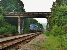 The Amtrak Palmetto #89 Going Under Ashley River Road [HD] - YouTube