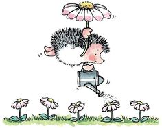 Cute & funny art and illustrations Artist Penny Black - Tender Shower Hedgehog Art, Cute Hedgehog, Penny Black Karten, Penny Black Cards, Hedgehog Illustration, Cute Illustration, Crocodile Illustration, Cute Images, Cute Pictures