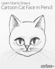 Immortalize your favorite pet with this lesson that teaches you how to draw a cat!