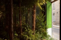 airbnb + pantone bring a bookable, greenery-themed apartment to life in london