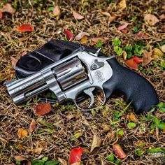 Smith & Wesson 686 Plus 357 Magnum Smith And Wesson Revolvers, Smith Wesson, Weapons Guns, Guns And Ammo, Rifles, Hand Cannon, 357 Magnum, Home Defense, Firearms