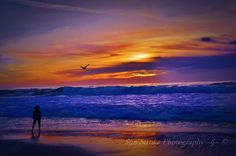 Sunset Over Carmel Beach II ... Sunset over Carmel By The Sea, California ... A kid, hands in his pocket, standing in amazement over the sunset as a seagull passes through ... perfect timing and simply stunning hues ...