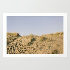Netherlands Beach 2 Art Print by Golden Sabine Dog Food Recipes, Netherlands, Art Prints, Pets, Beach, Photography, Design, The Nederlands, Art Impressions