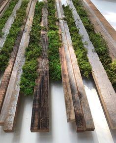 A Comprehensive Overview on Home Decoration - Modern Moss Wall Art, Moss Art, Vertical Gardens, Small Gardens, Landscape Design, Garden Design, Minimalist Garden, Moss Garden, Succulents Garden