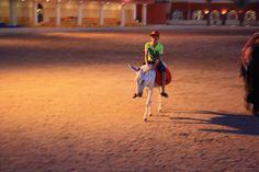 gratis voor de kinderen ezel of kameel rijden