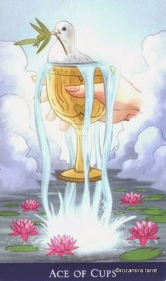 Ace of Cups ~ Llewellyn's Classic Tarot