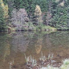 Herbststimmung am Piller See 🍃🍂 #dachtirols #pitztal #autumnleaves #lovetirol Explore, Photo And Video, Instagram