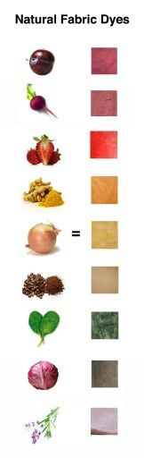 Natural fabric dyes from fruits and vegetables from an experienced dyer.