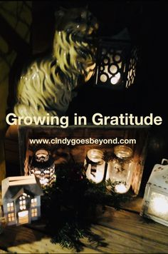 Growing in Gratitude - Cindy Goes Beyond 5 Daily Gratitudes 30 Days of Gratitude 30 Day, Self Love, Gratitude, My Life, Thankful, Faith, Be Grateful, Self Esteem, Loyalty