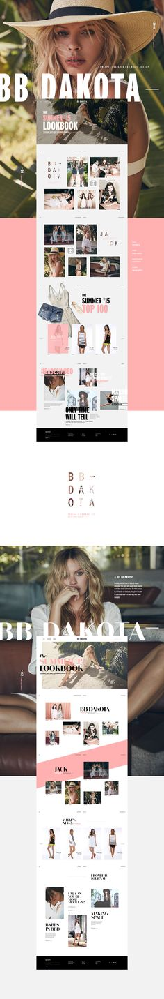 BASIC asked me to join them in creating a new look and feel for BB Dakota. I did several home page designs contribute to the project.