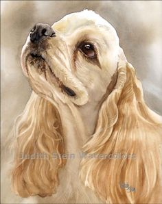 Cocker Spaniel Signed Giclee Watercolor Print via Etsy.