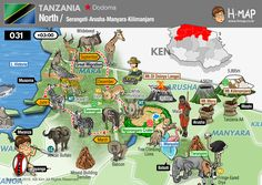 Tanzania Map - North Tanzania (Serengeti - Arusha, Manyara, Kilimanjaro) /  Serengeti Great Migration /  Illustration, Travel, History, Unesco, Animal, Man, Food, Industy, Culture, Nature...